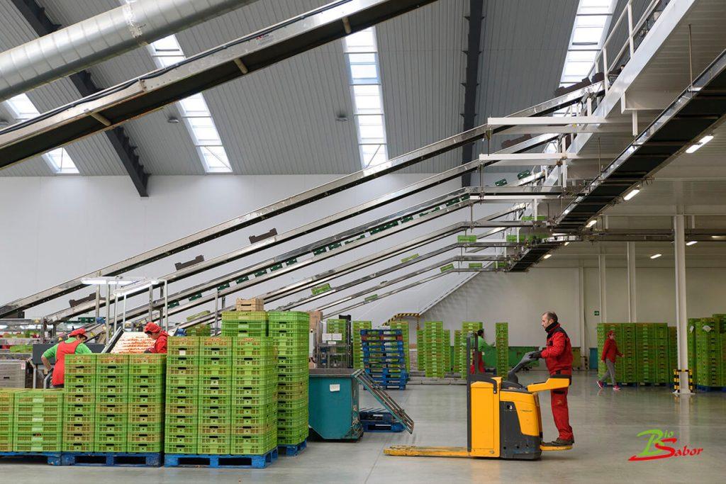 trabajadores-almacen-biosabor